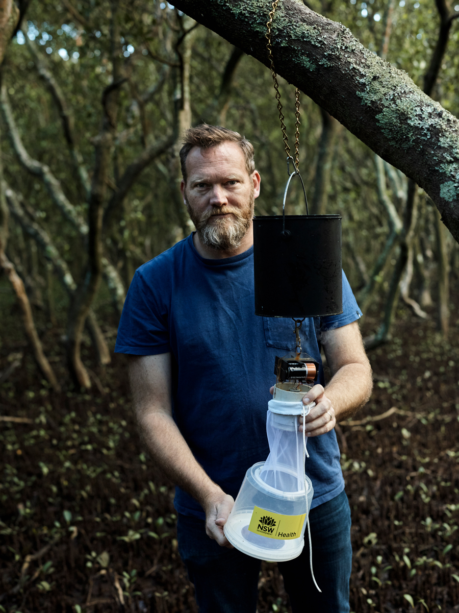 Dr. Cameron Webb holds his mosquito trap to the camera. There are at least ten different species inside.